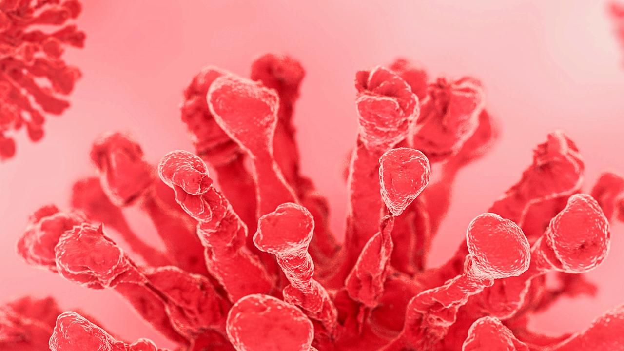 antigripales-para-virus