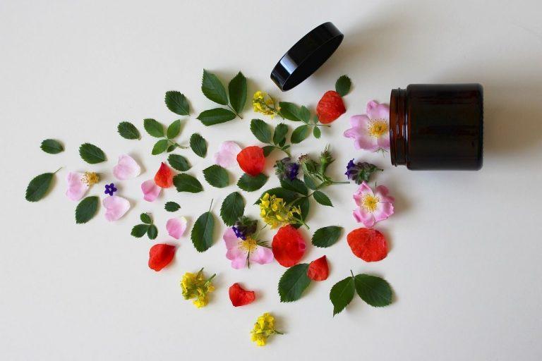 Encuentra en los productos Garnier, ingredientes naturales