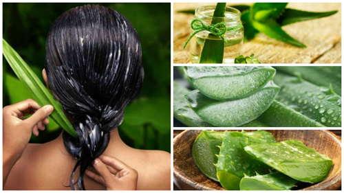 aloe vera en cabello de chica7 - Mascarillas naturales para tu cabello