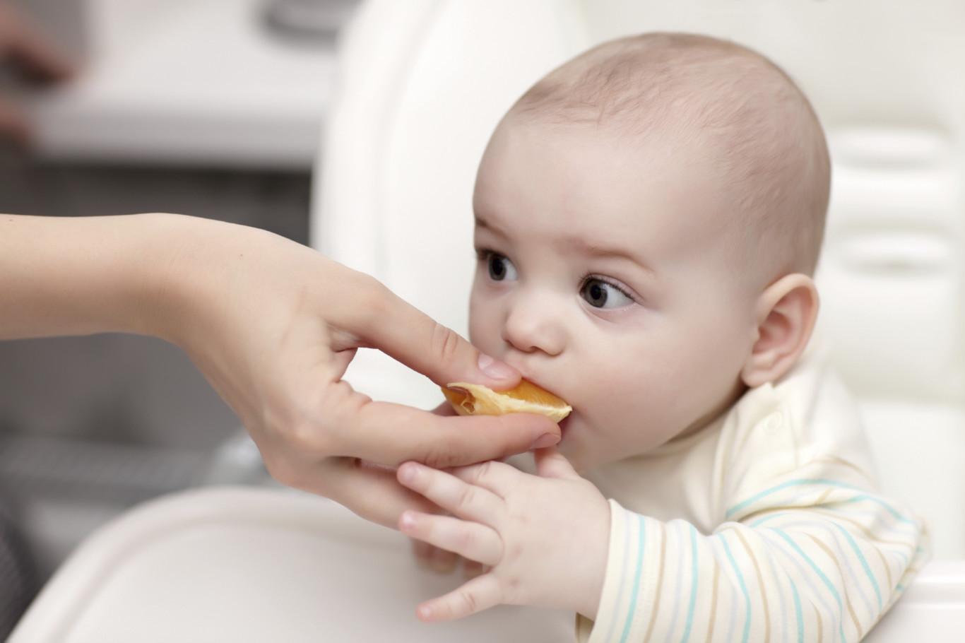 como alimentar a un bebe - Alimentación en bebés de 6 meses
