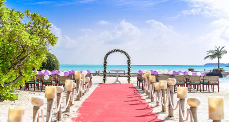 celebrar boda en verano - Celebrar una boda en verano